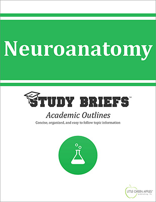 Neuroanatomy cover