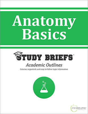 Anatomy Basics cover