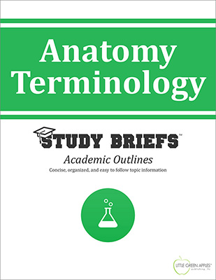 Anatomy Terminology cover