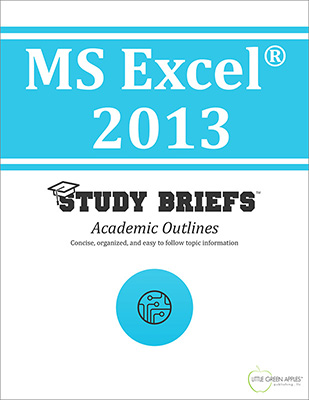 MS Excel 2013 cover