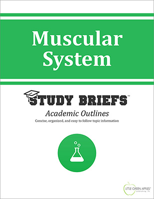 Muscular System cover