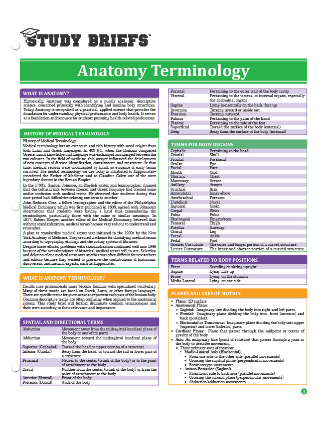 Anatomy Terminology – Study Briefs